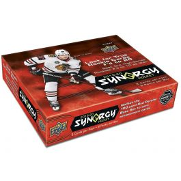2019-2020 NHL Synergy - Hockey Display